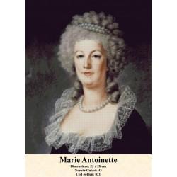 Set goblen  Marie Antoinette 1