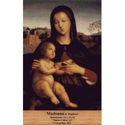 Kit goblen Madonna de Raphael