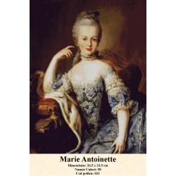 Kit goblen Marie Antoinette 2