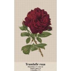 Model goblen Trandafir rosu