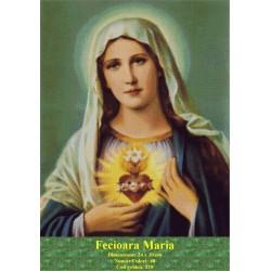 Model goblen Fecioara Maria