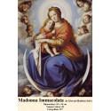 Model goblen Madonna Immacolata de Giovani Battista Salvi