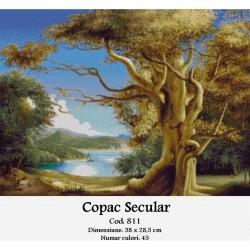 Model goblen Copac secular