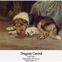 Kit goblen Dragoste canina